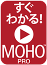 MOHOprovideo