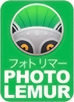 Photolemur